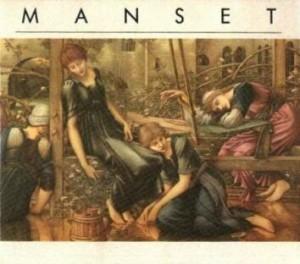 manset-2-300x264